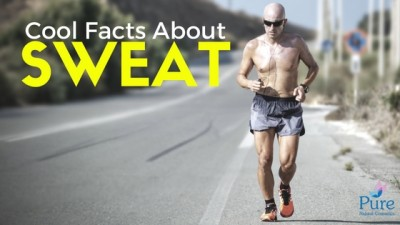 facts about sweat