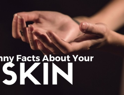 Amazing Fact About  Skin You might didn't know